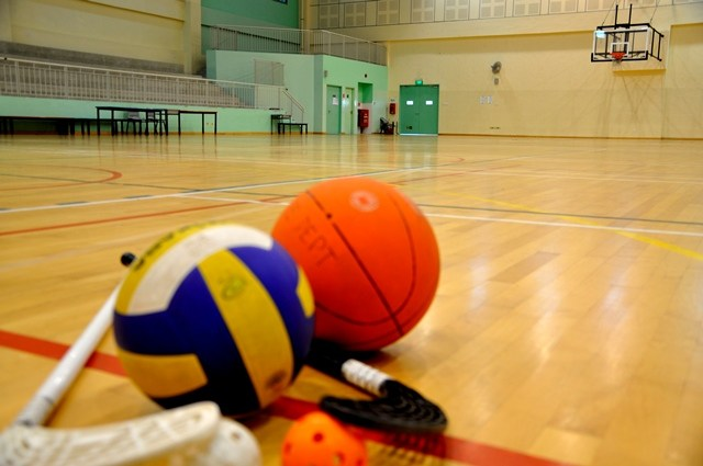 indoor sports at leisure time